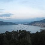 5 vista puente